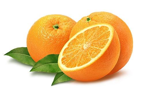 апельсины от блох