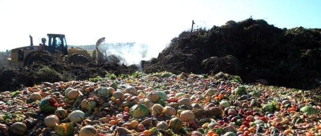 Договор на утилизацию пищевых отходов