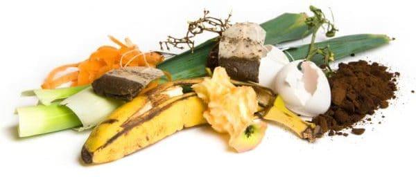 Характеристика продовольственного мусора