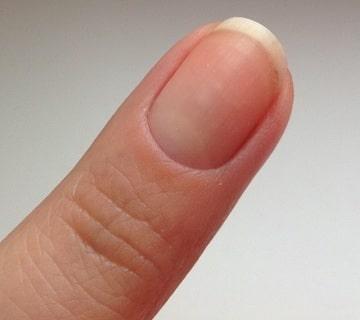 Договор на вывоз и утилизацию ногтей