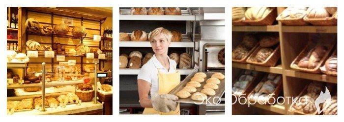 профессиональная помощь для формирования пакета документов для мини-пекарни