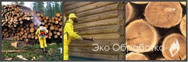 процесс фумигации древесины