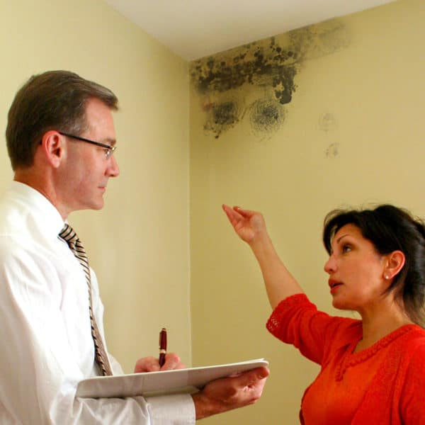 Ликвидация и уничтожение плесени и грибка на стенах в ванной