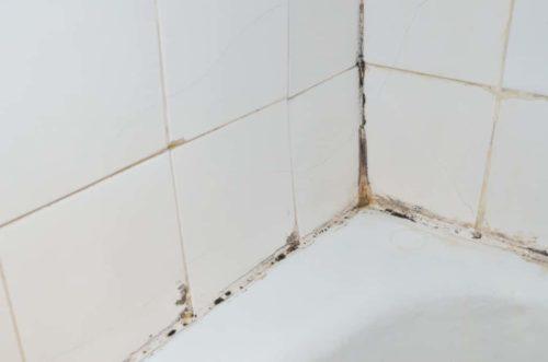 Ванная комната с грибком на стене. Медный купорос может быть эффективен в борьбе с плесенью