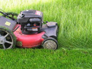 скашивание травы на участке