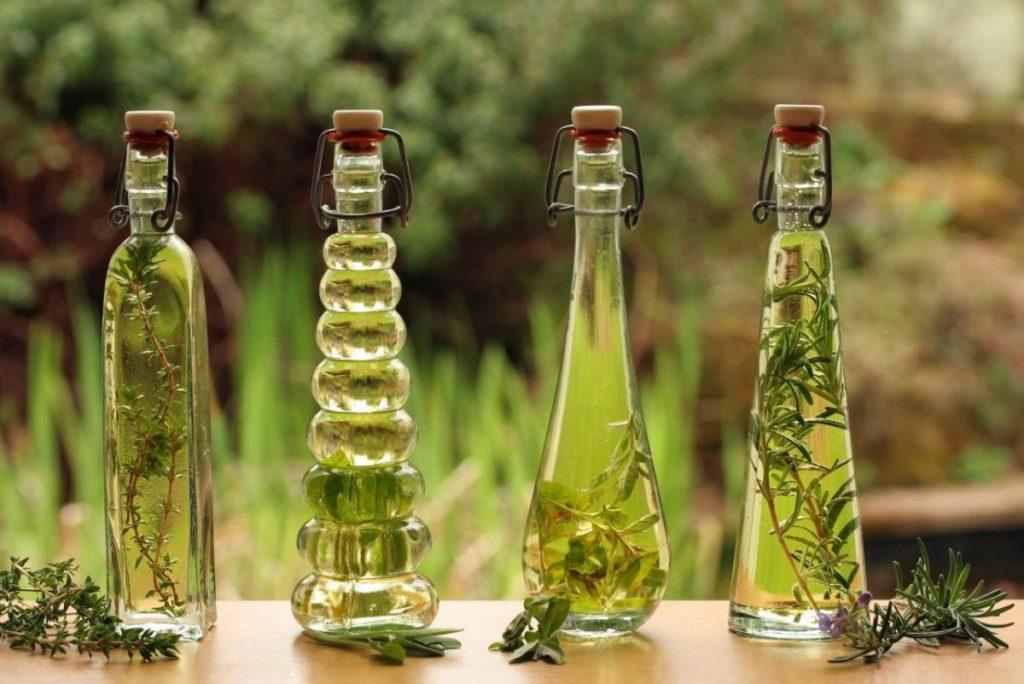 обработка от тараканов растительными средствами
