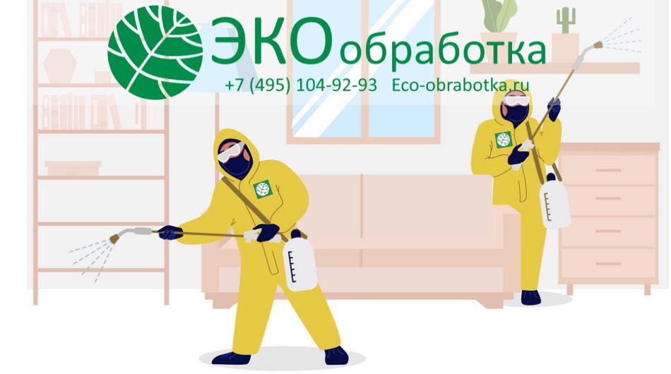 обработка от клопов - профессиональное уничтожение клопов в квартире