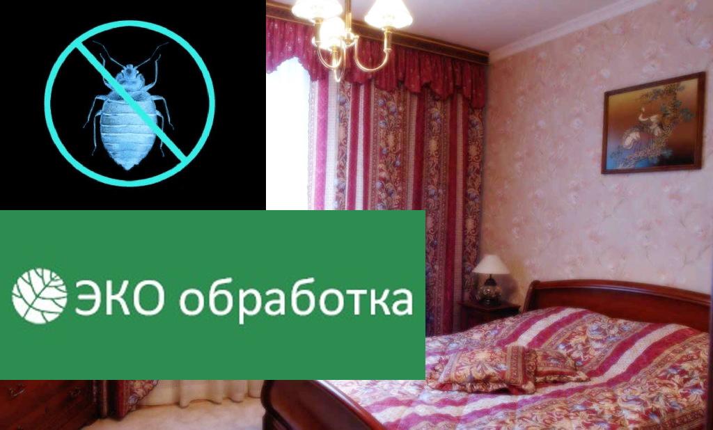 Цены на уничтожение клопов в Москве и Московской области