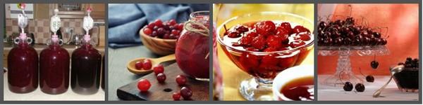 ягоды и варенье приманивает вредителей