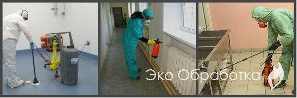 уничтожение тараканов, клопов, вирусов в Москве