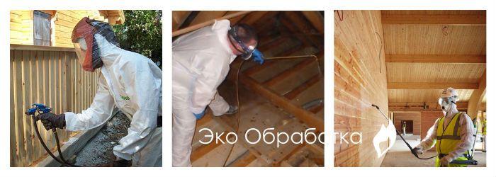 обработка дома от жука точильщика
